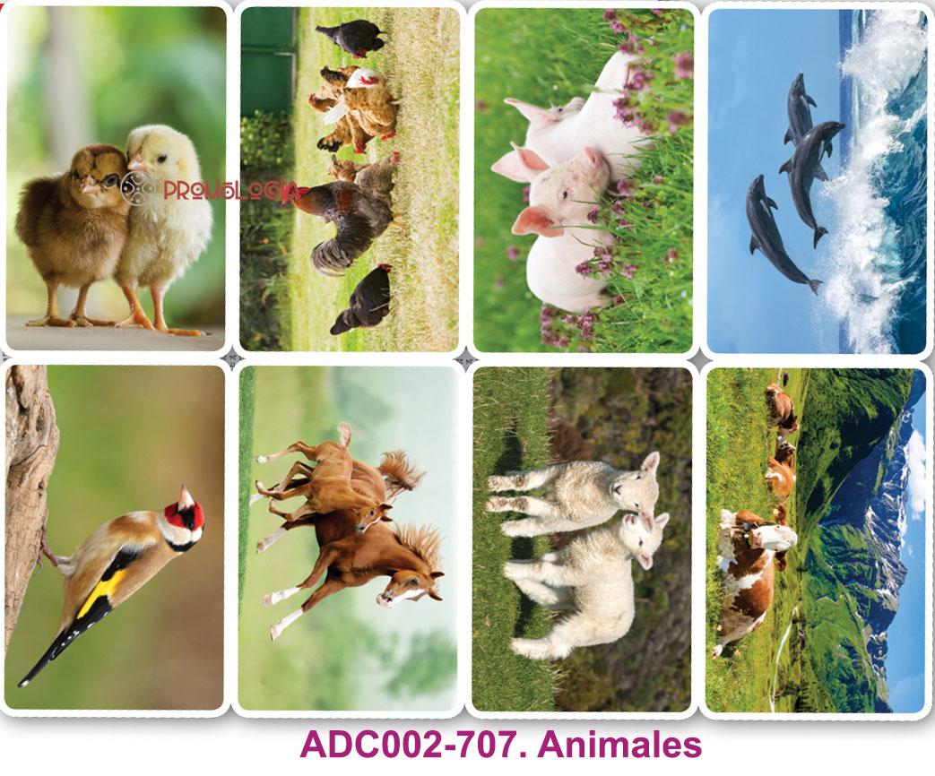 ADC002-707-calendarios-bolsillo-animales